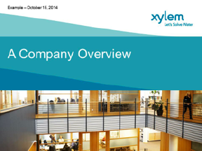 A_Company_Overview
